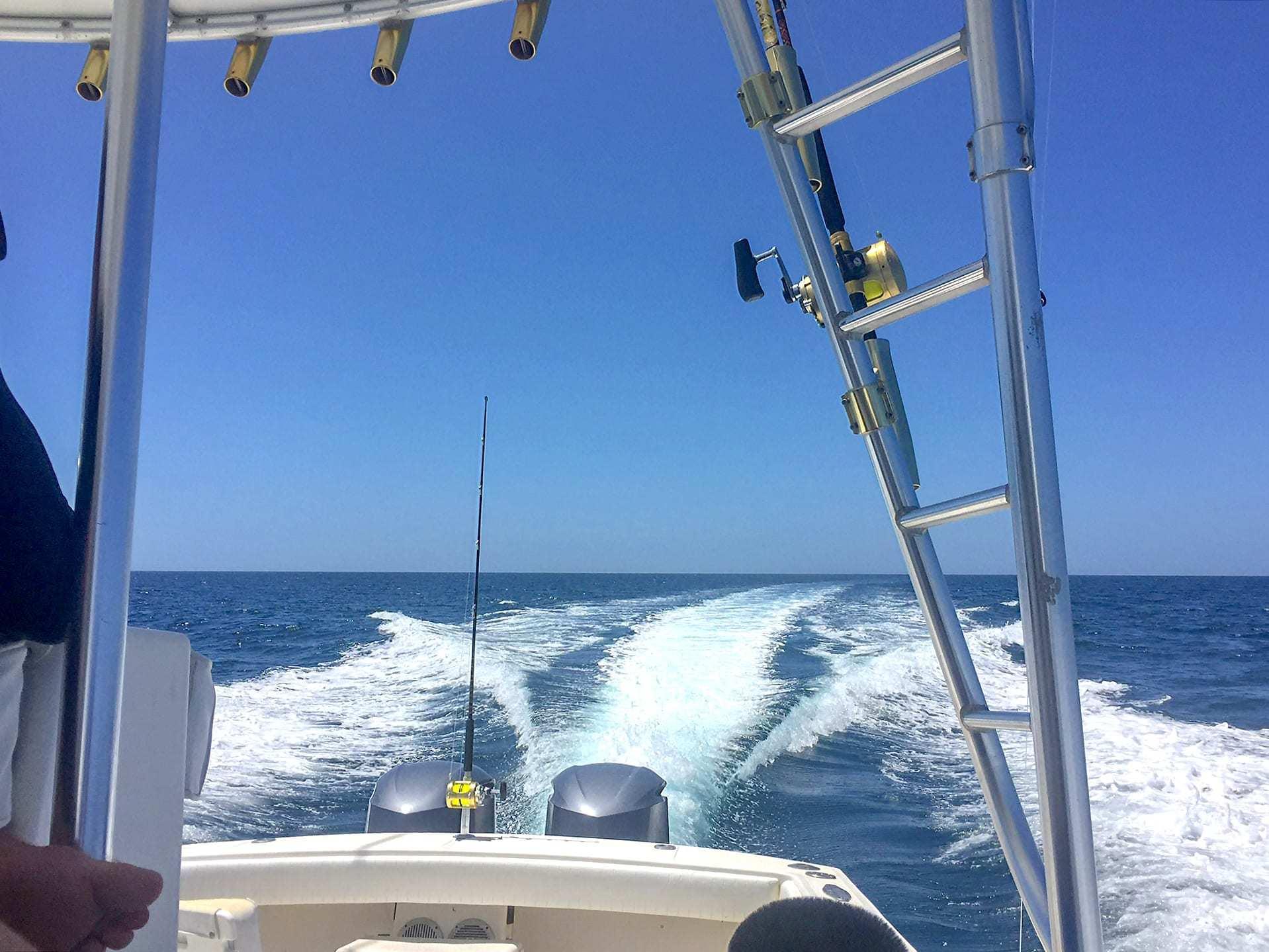 Wasabi Fishing - The Boat